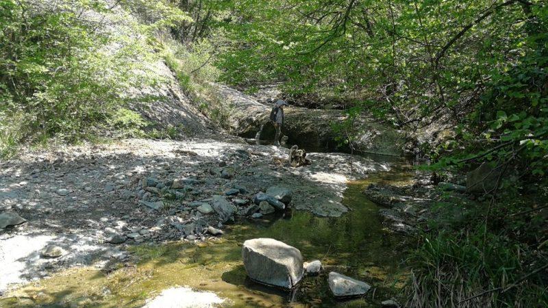 """Fest'Acos va ad Arquata alla scoperta dell'acqua """"fredda"""""""