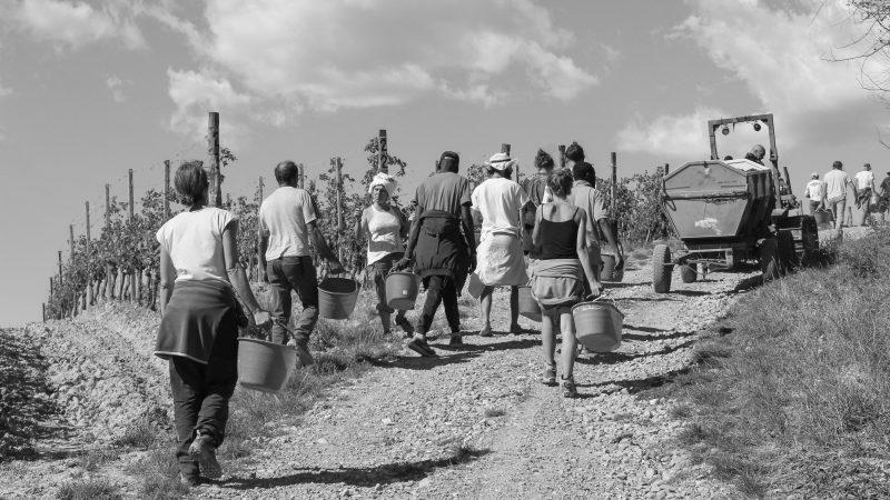 Tortona, la Musa sui Colli: classifica del concorso e qualche riflessione